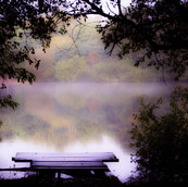 Morning Mist - Apley Pool