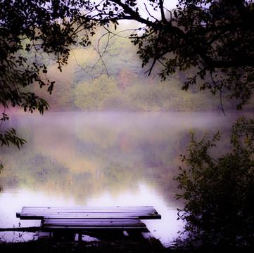 Morning Mist - Apley Pool