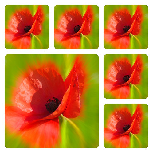 Set of 6  Matching Poppy Coasters - Image of Your Choice