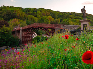 Ironbridge wth poppies and statue P6030373.jpg