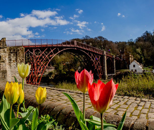 Ironbridge with Tulips _3260273.JPG