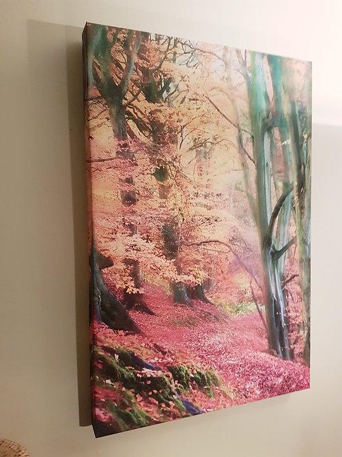 A3 Handmade Canvas - Autumnal Woodland, Shropshire