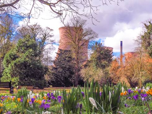 Power Station in Spring p2.JPG