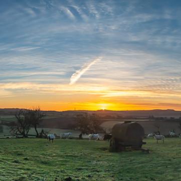 PC010066-Pano Wrekin Winter Sunrise.jpg
