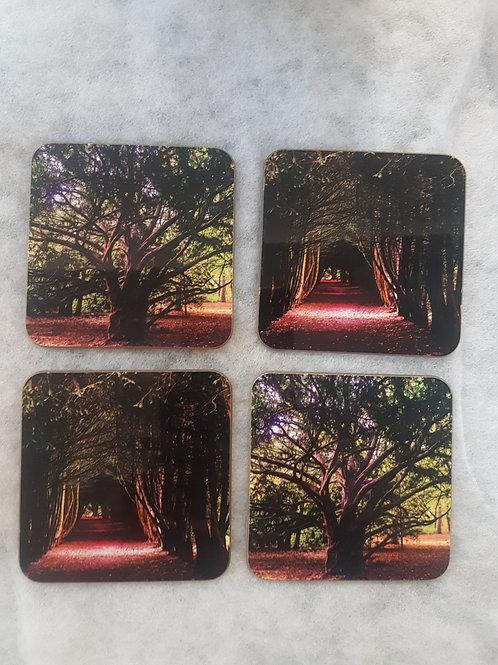 Set of 4 Tree Coasters