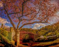 P3260291-Edit Ironbridge blossom cityscape