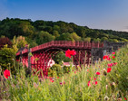 Ironbridge with poppies 2P6030389-Edit.jpg