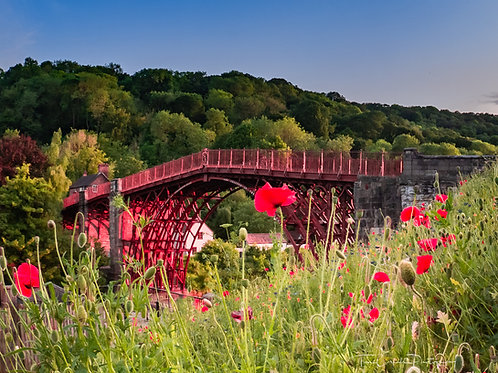 Fine Art Photography Print - Ironbridge Poppies, Shropshire