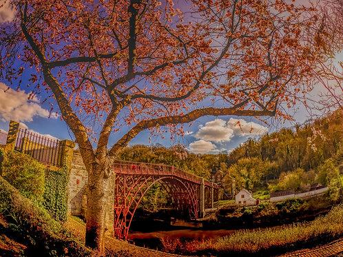 Fine Art Photography Print - Ironbridge Blossom,Shropshire