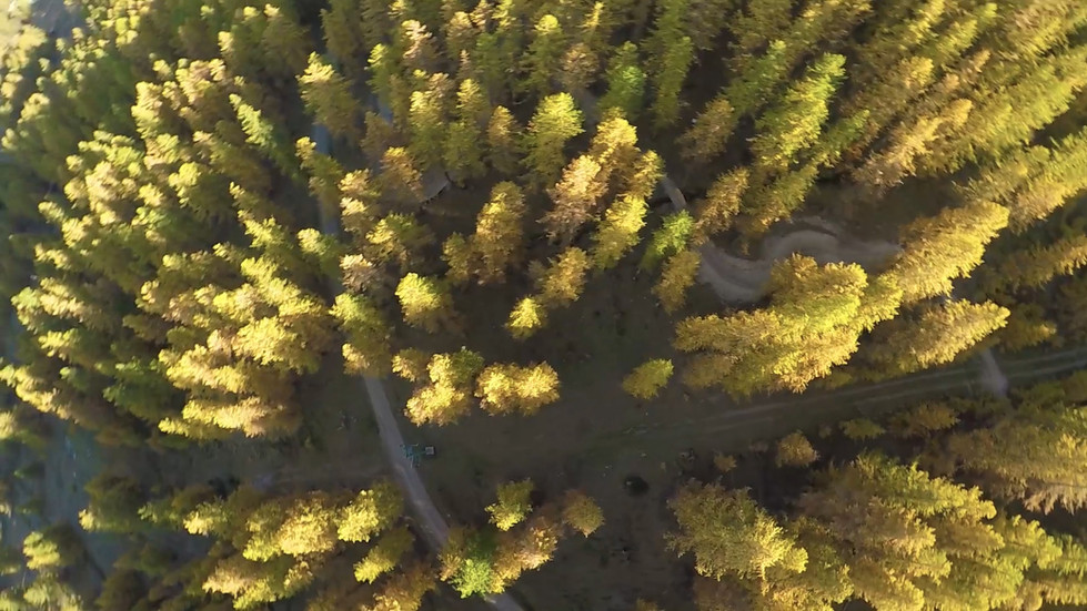 rid'automne.mp4