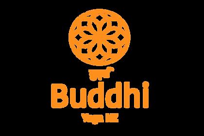 Buddhi indigo 2019 TEST RUN ORANGE v3.pn