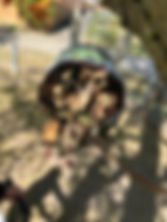 photo_2020-04-27_14-55-46.jpg