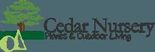 cedar nursery.png