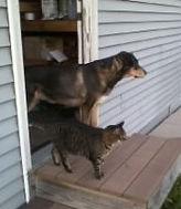 Jaina and Kitty