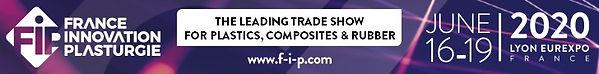 FIP Exhibtion logo