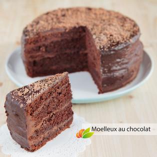 Gâteau moelleux au chocolat (layer cake)