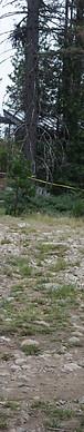 Camp Marin Sierra