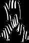 Zebra Ribbon.png