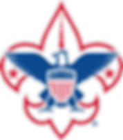 scout logo.png