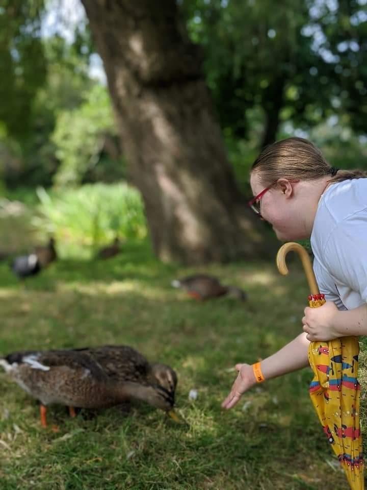 LLH feeding ducks