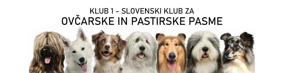 KLUB FCI 1 - SLOVENSKI KLUB ZA (1) (1).p