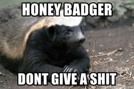 honey-badger-dont-give-a-shit.jpg