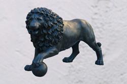 ЛЬВЫ / LIONS