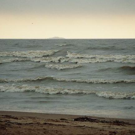 Живой Финский залив