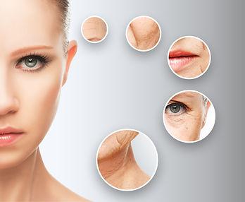 老化する顔のパーツ