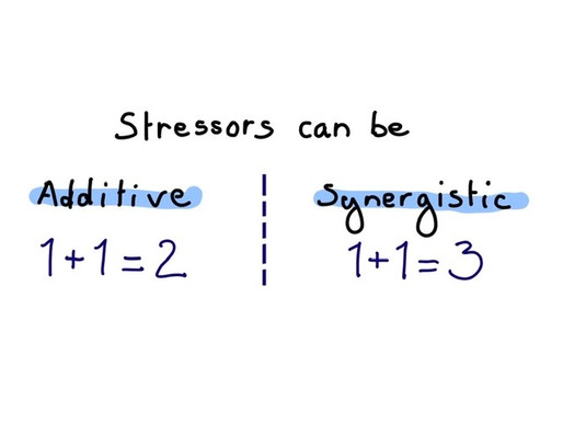 Coaching to Manage Stress