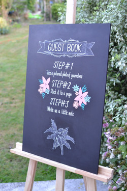 Phoebe & Arya Chalkboard Signs - August 2016 (9)_edited