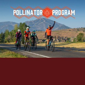 Giddy Up Pollinator Program!