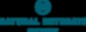 NR_SV_Standard_BlueLagoon (2)@2x.png