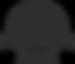 RPI_Logo_Charcoal_MIIR (1).png