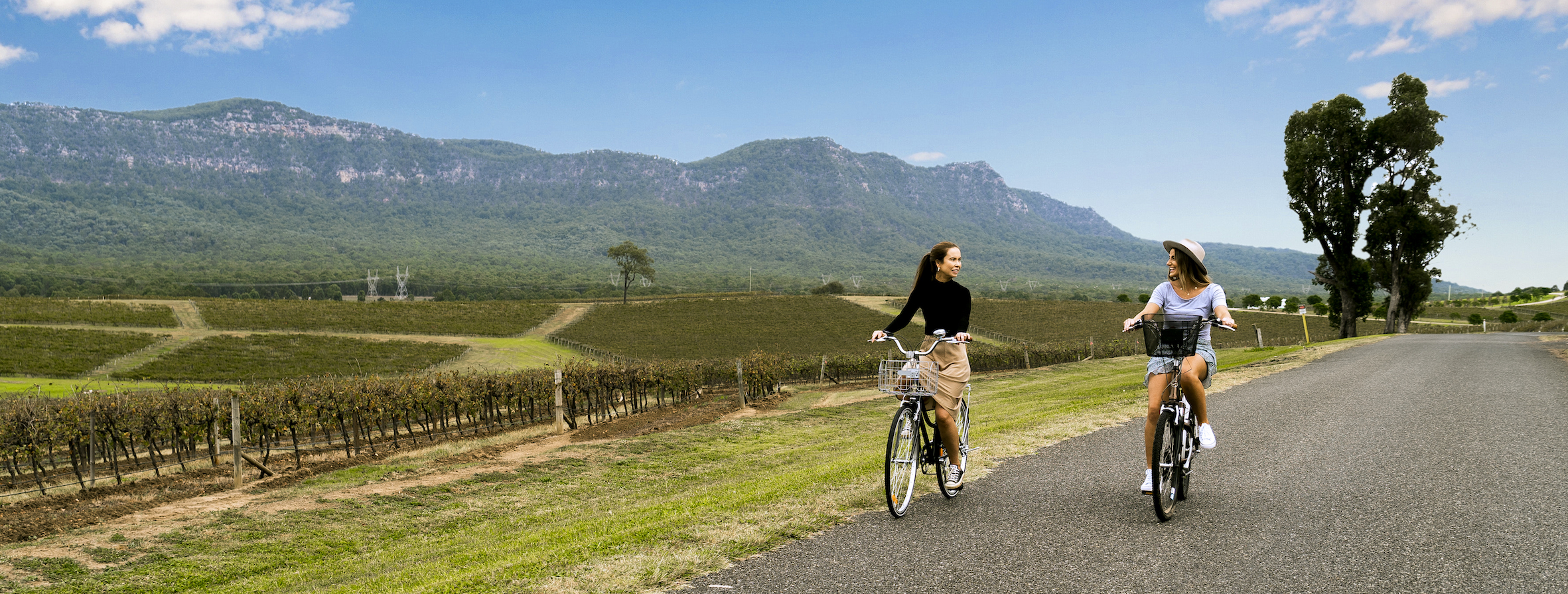 Electric Bike Wine Tours