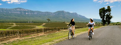 hunter-valley-around-hermitage-cycleway-