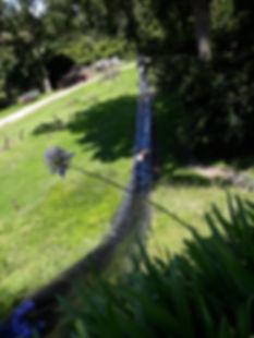 photo 18 19 black water slide.jpg
