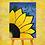Thumbnail: Flower Power