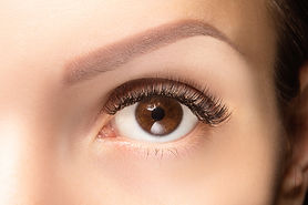 Canva - Brown eye with false long lashes