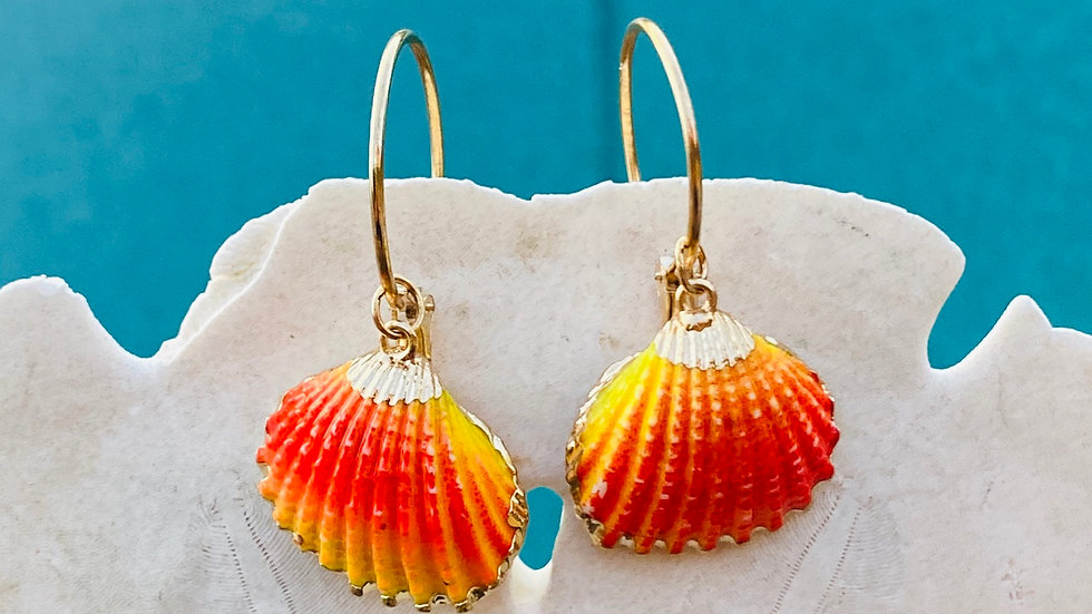 Orange shell earrings with gold trim