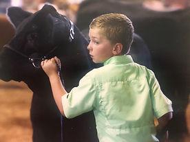 boy showing a heifer