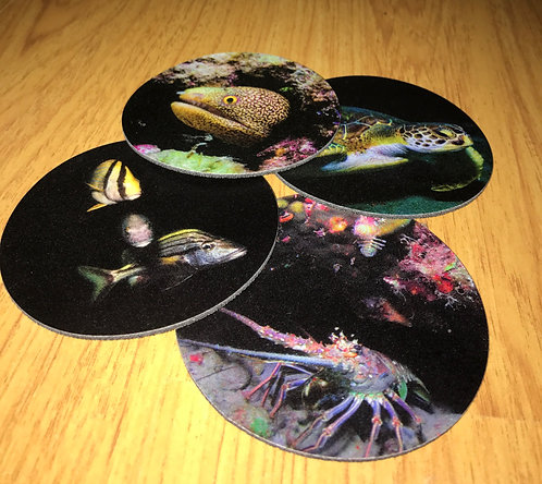 Outdoor Drink Coasters