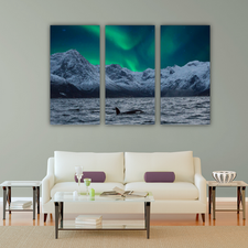 Northern lights combo pic with Orca in the Fjord, Northern Norway