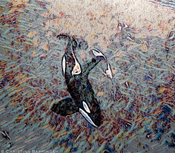 Orca, Norway: DIGITAL ART