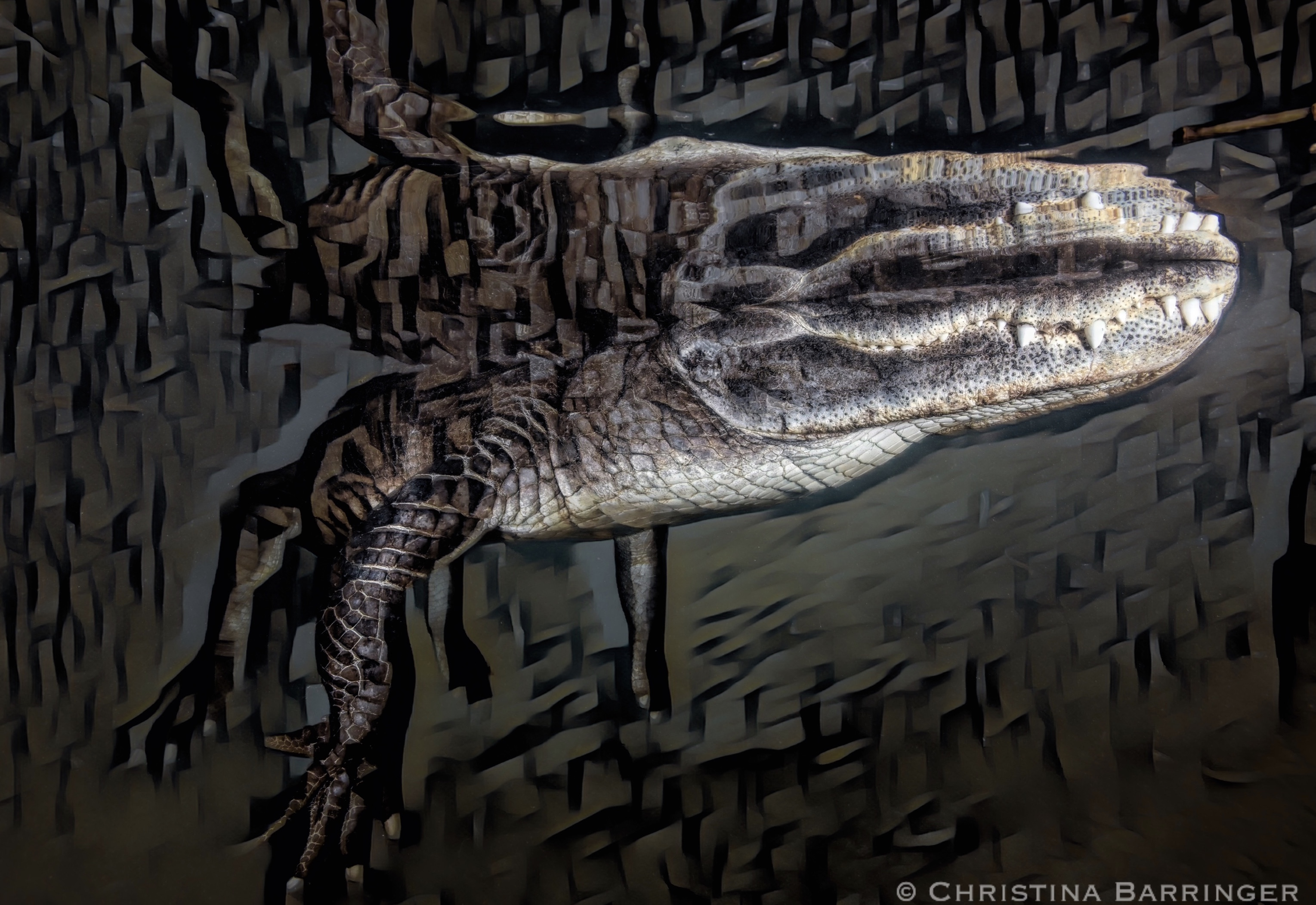 Gator, FL: DIGITAL ART