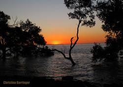 N. Stradbroke Island, Australia