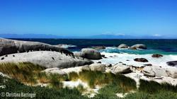 Boulder Beach; Cape, Town, S. Africa
