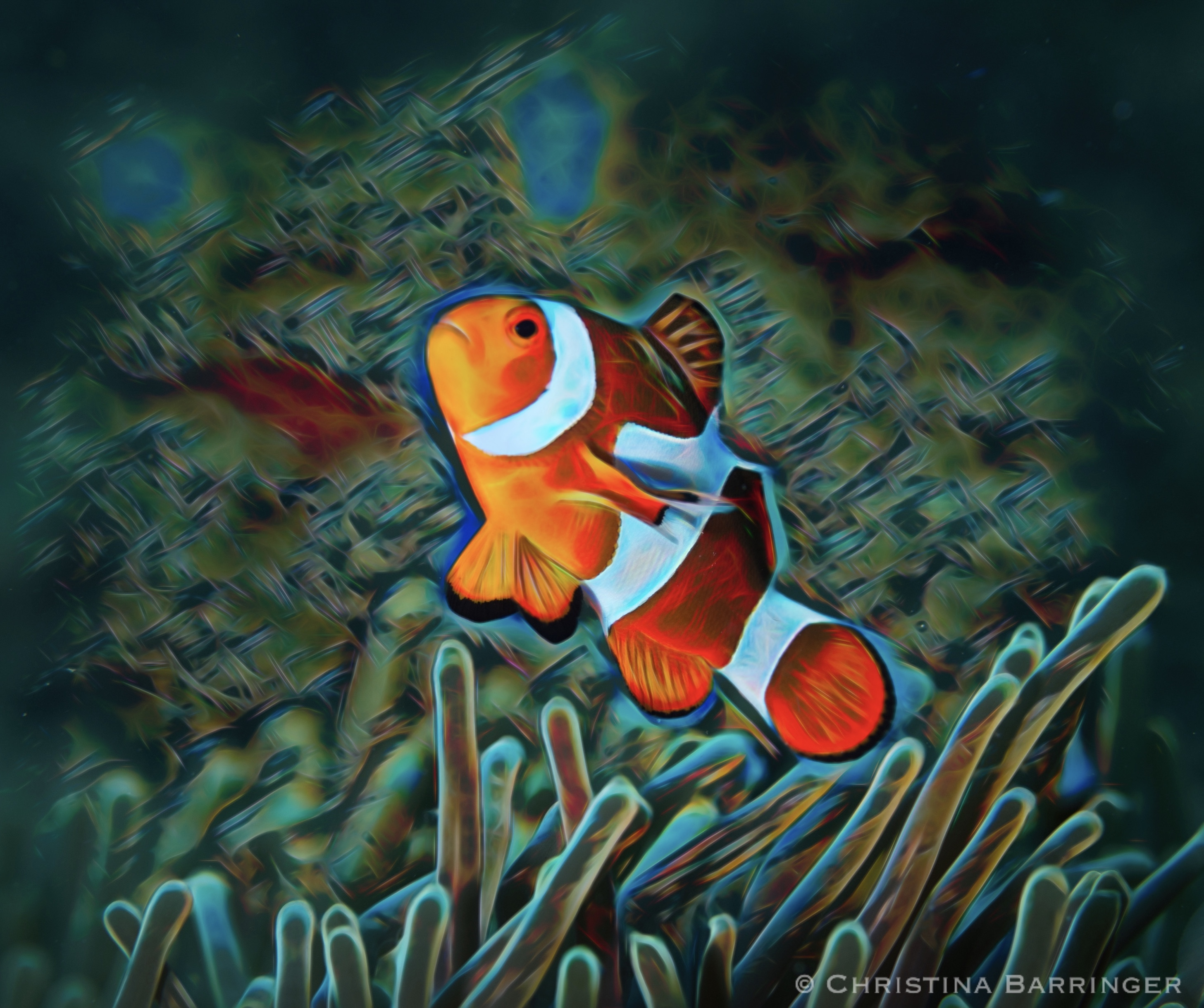 Clownfish; Anilao, Philippines: DIGITAL ART