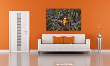 Clownfish 3 panels