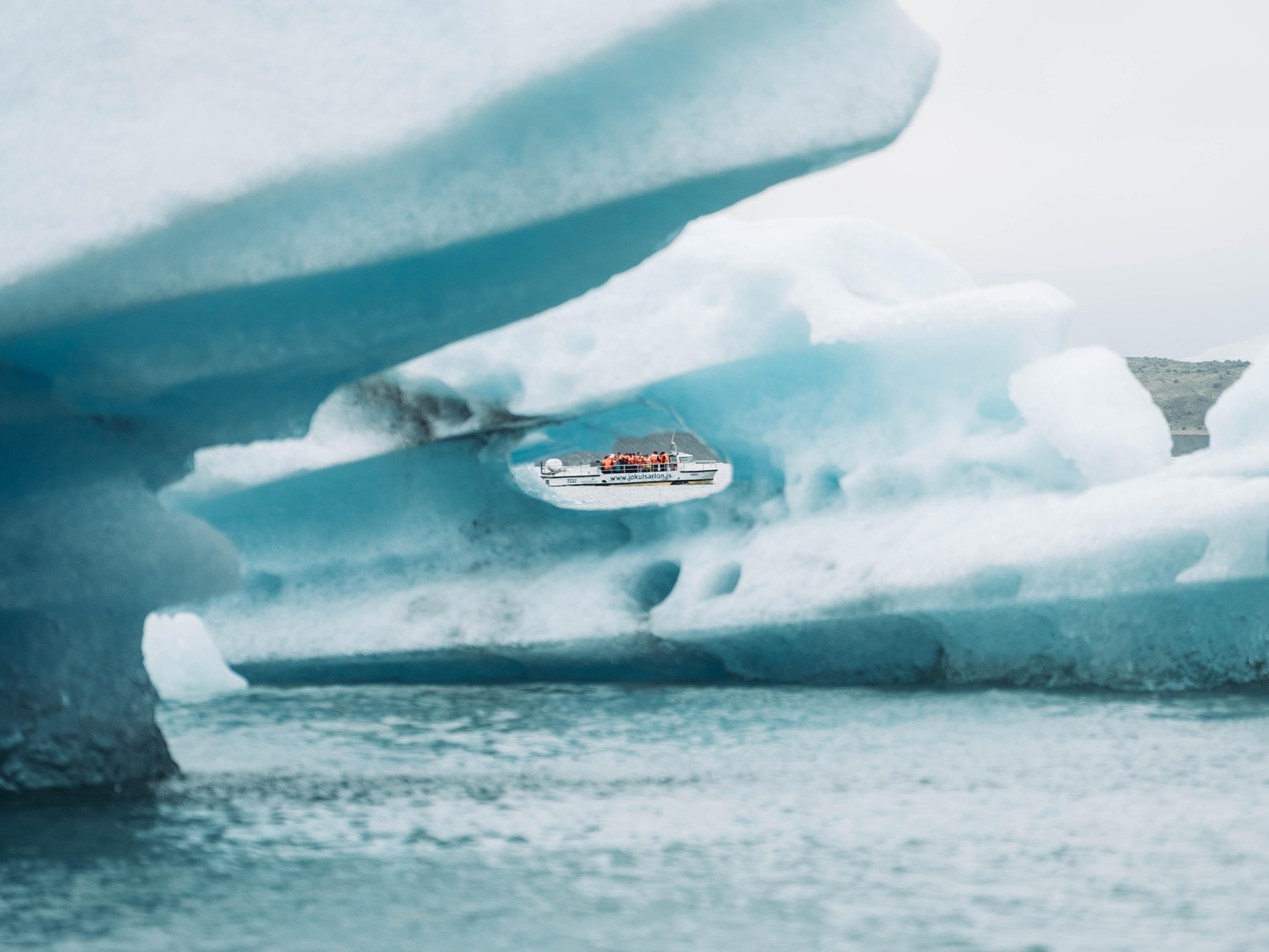 Iceberg Safari